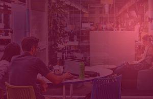 nz startup ecosystem